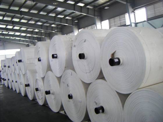 PP fabric roll / PP fabric tube
